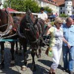 8. HildburghäuserAltstadtfest vom 29. bis 31. Juli 2016