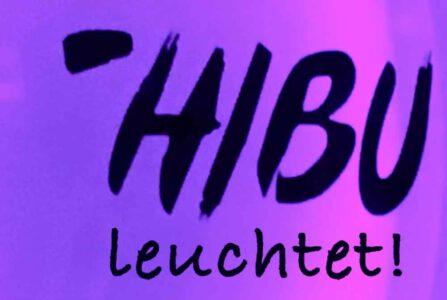 Hibu-wird-leuchten-1024x686